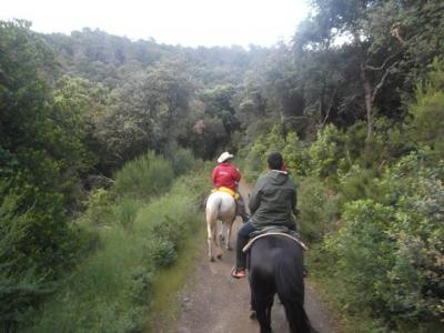 1 hour Horse riding tour in Santa Susana