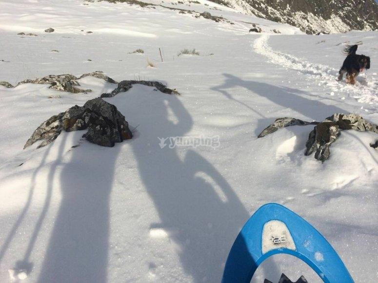paseando con raquetas de nieve
