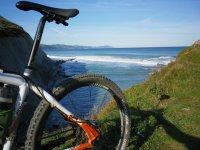 自行车的大海