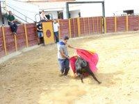 Solo con la vaquilla en Guadahortuna