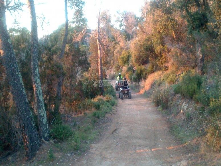 Explore the Montnegre Nature Reserve