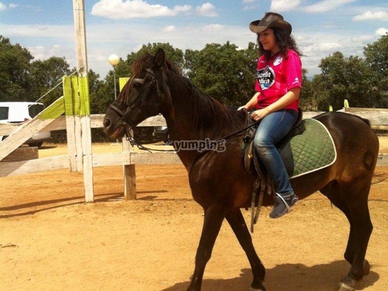 骑马会议骑在喇嘛塔
