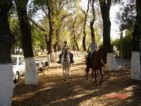 90 mins horseback route over Cazalla de la Sierra