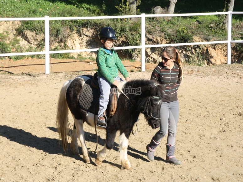 Christmas offer in horse riding activities