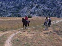 Corriendo con los caballos