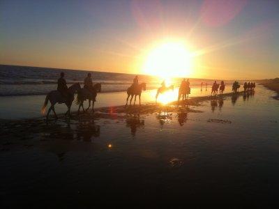 Fughe romantiche spiagge vergini di Doñana