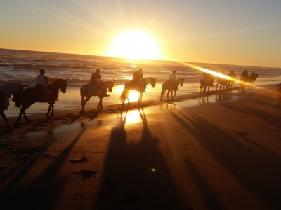 Sunset Horse Riding in Costa de la Luz, 2h