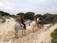 Completa escapada a Doñana