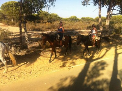 Doñana 1 Night, Horse Riding and 4x4 Route