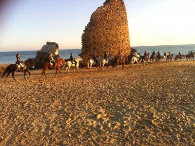 Fuga da Doñana e Aldea Rocío, Cavalli e 4x4