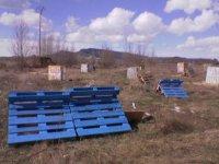 Defensas azules en terreno abierto