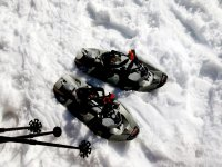 Snowshoes tour in Hecho Valley 3 h