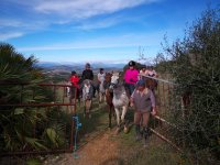 Guided horse riding Antequera
