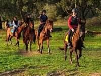 Horse riding in Antequera for children