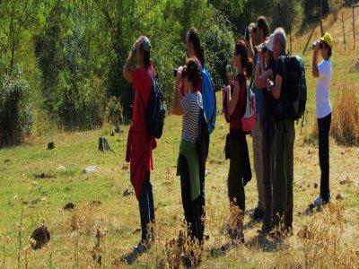 Avistamiento aves y ruta en piragua por el Duratón