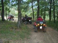 Attraversare la foresta con i quad