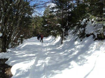 Excursión de raquetas de nieve medio día, Biescas