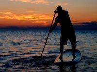 桨冲浪蓝色色调的水域