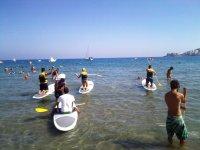 划着桨冲浪桨冲浪