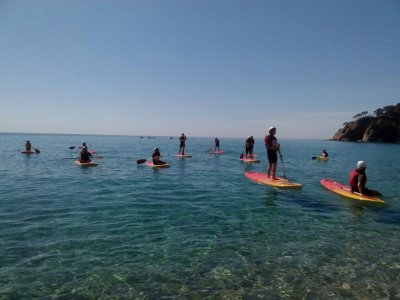 Get Active Tossa Paddle Surf