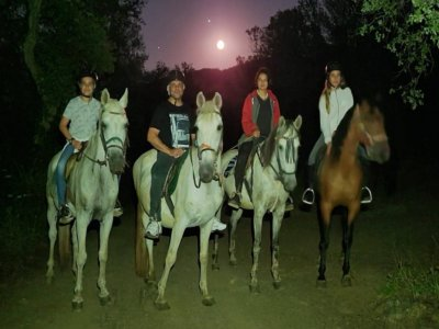 骑马游览满月,1小时