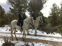 A caballo sobre la nieve