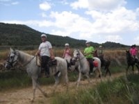 Ruta a caballo en fila