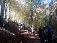 路上行走在瓜达拉哈拉跋涉登山