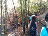 Grupo de excursionistas en Guadalajara