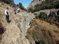 集团响应一边倒峡谷标志Barbatona