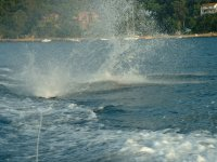 Al agua