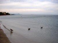 La playa de Denia