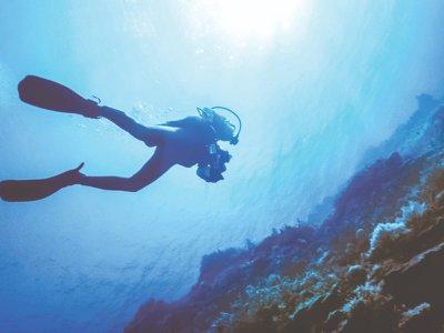 泰拜爾蓋島的水肺潜水洗礼,3小时