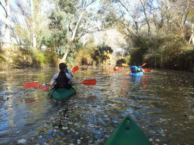 Kayaking Tour in Guadiamar, 1h 30 min
