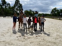 Con los caballos y el perro en Negreira