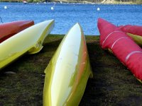 Quality canoes