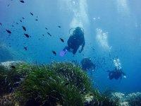 Buceadores viendo la fauna submarina menorquina