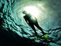 Buceo en las mejores aguas
