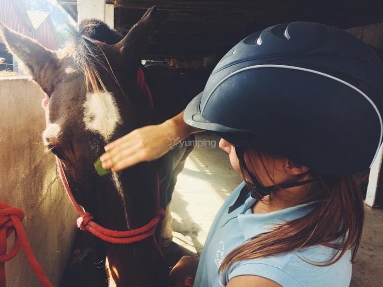 Cuidando al caballo