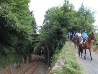 Horse ride tour near the farm