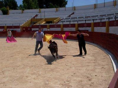 Capea, barbacoa, gymkana y tiro con arco, Aranjuez