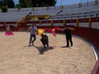 Bullfight, BBQ, gymkhana, archery, Aranjuez