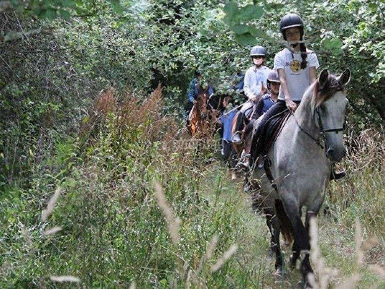 Horseback route in Cal da Loba