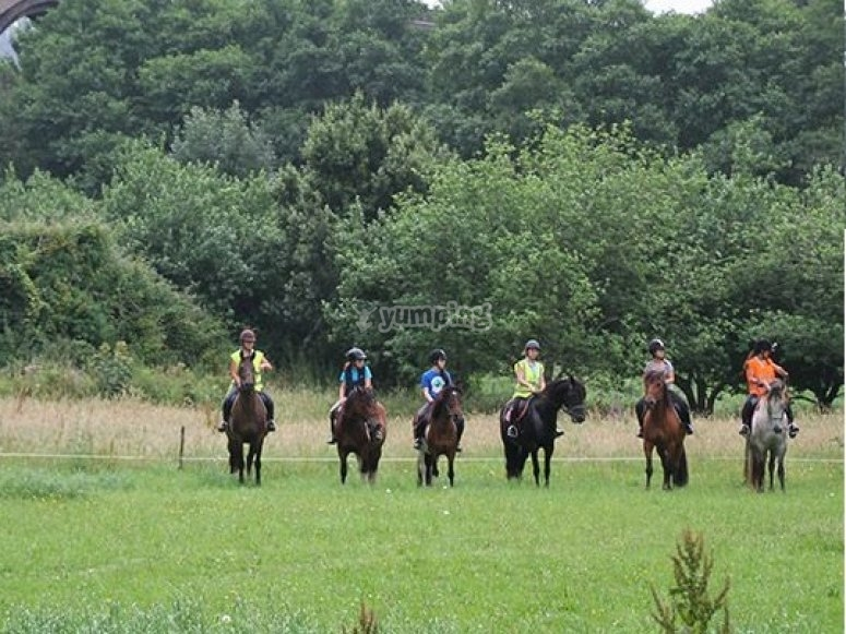 Starting from the equestrian centre with the horses