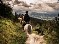 骑马后骑马