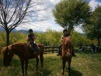 小孩在马匹