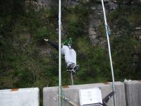 Bungee jumping back