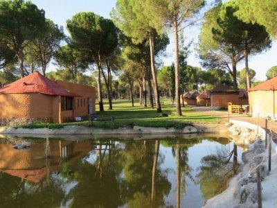 Campamento inmersión inglés 2 semanas Valladolid