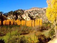 Ruta en 4x4 en la Sierra de Cazorla, 4,5 h