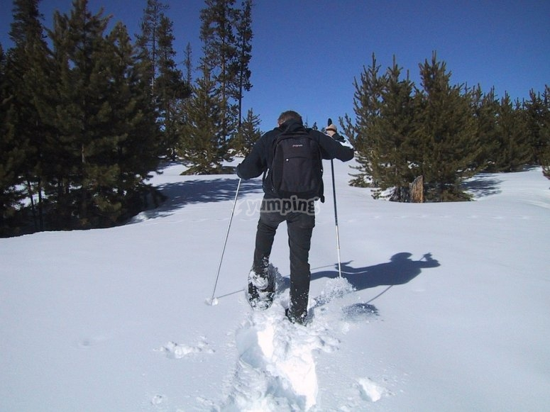 Session with snowshoes